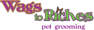 Wags to Riches Fenwick Island